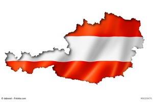 Beruflich in Österreich Ein Kleiner Erfahrungsbericht - Bücher