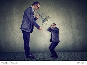 Die 1-Minuten-Kritik - So funktioniert´s - Karriere